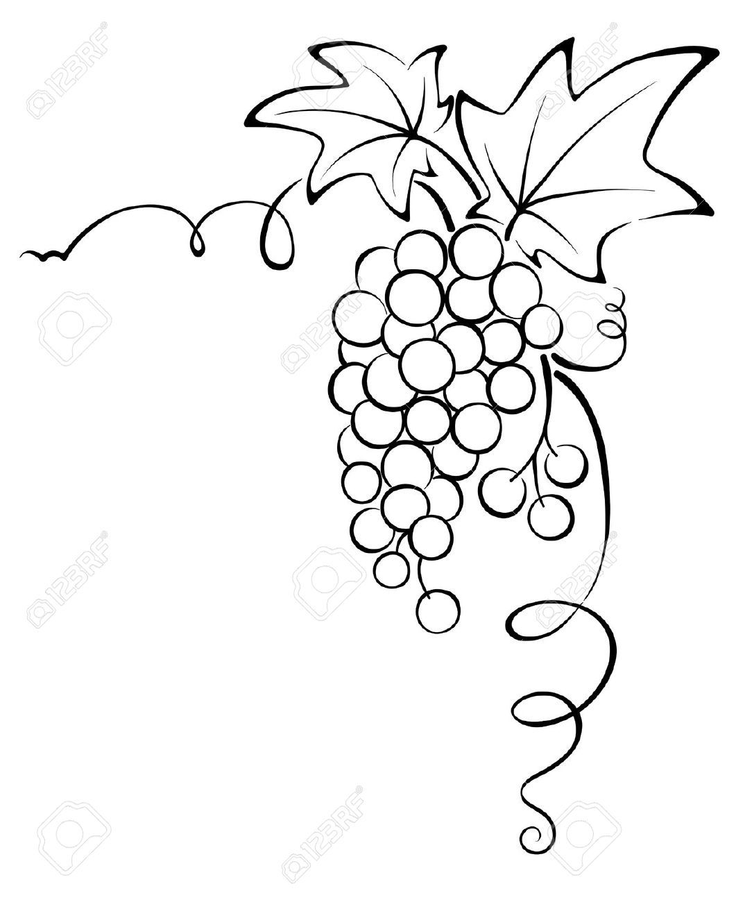 Agrape vines q clipart black and white png free grape vine design - Google Search | Tile Abstract & Mosaic | Vine ... png free
