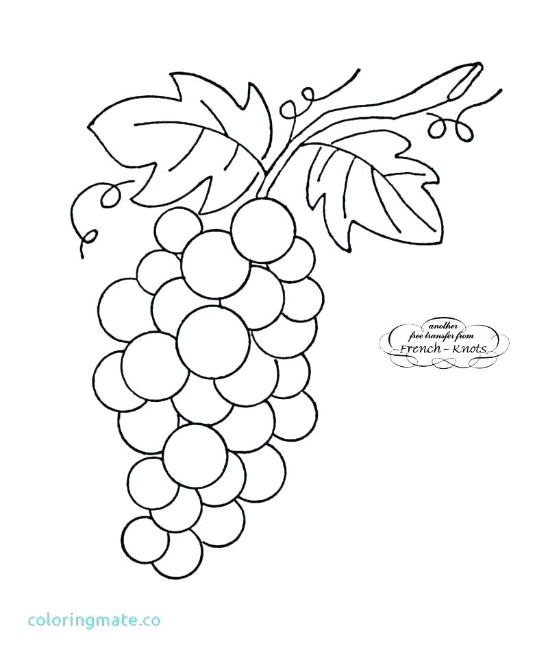 Agrape vines q clipart black and white svg library stock Grapes Coloring Pages Page Best Of Grape Vine Clip Art Leaf – adomonline svg library stock