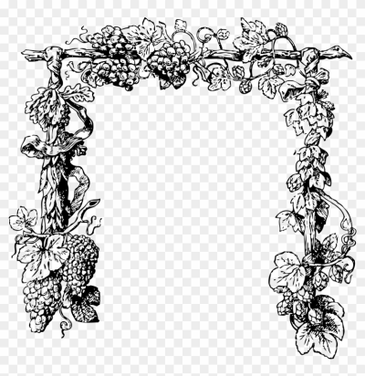 Agrape vines q clipart black and white graphic royalty free Free PNG images - DLPNG.com graphic royalty free