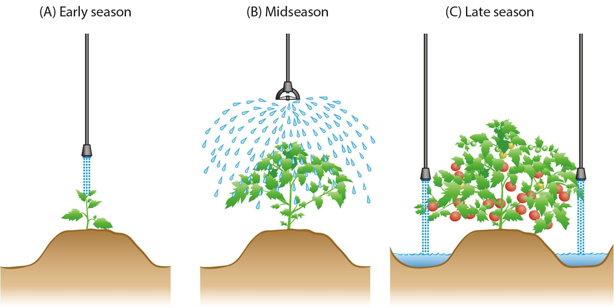 Agricultural irrigation clipart graphic download Overhead irrigation holds water-saving potential for California ... graphic download