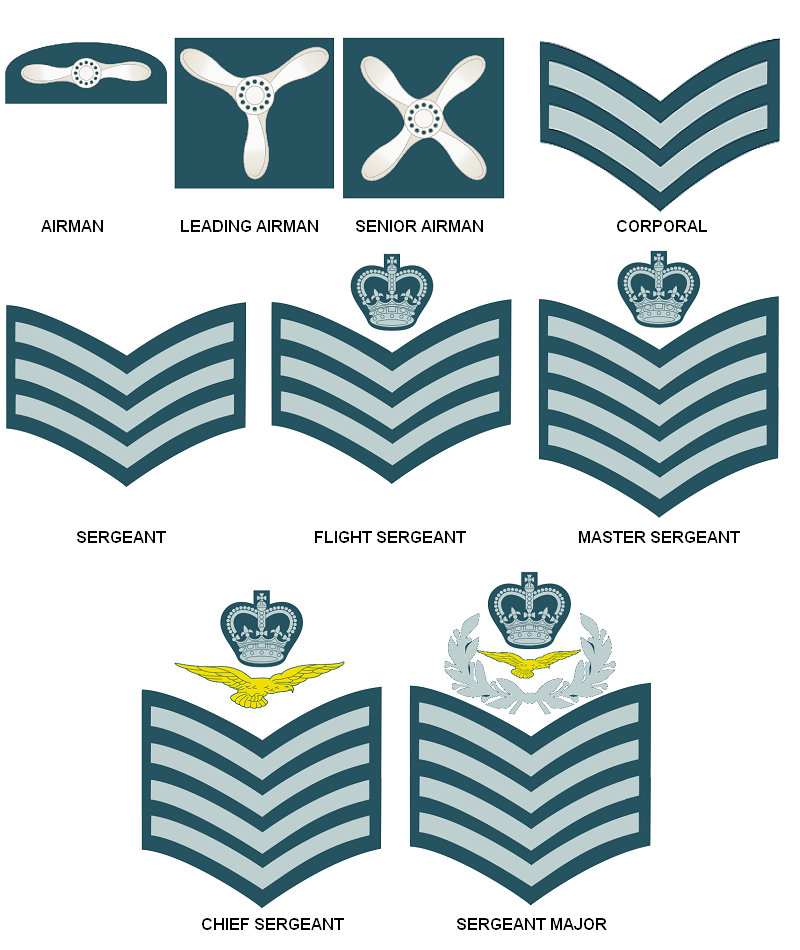 Air force ranks clipart vector library library Army Cartoon clipart - Blue, Text, Line, transparent clip art vector library library