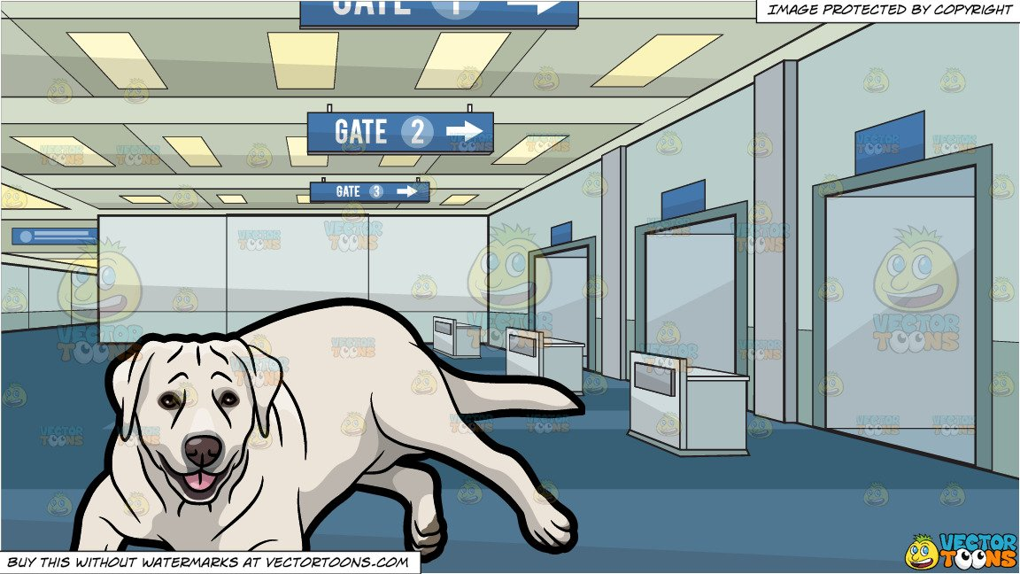 Airport clipart with pets clip art freeuse library A Resting Labrador Pet Dog and Airport Departure Gate Background clip art freeuse library