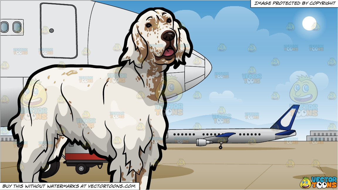 Airport clipart with pets clipart black and white download An Adorable English Setter Pet Dog and Airport Runway Background clipart black and white download