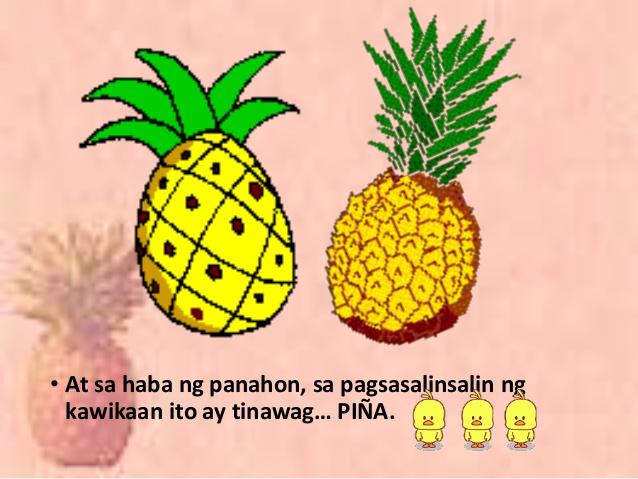 Alamat ng pinya clipart royalty free download Alamat ng pinya royalty free download