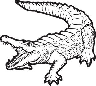 Gator clipart black and white cute vector library library Alligator Clipart Black and White - ClipartPost vector library library