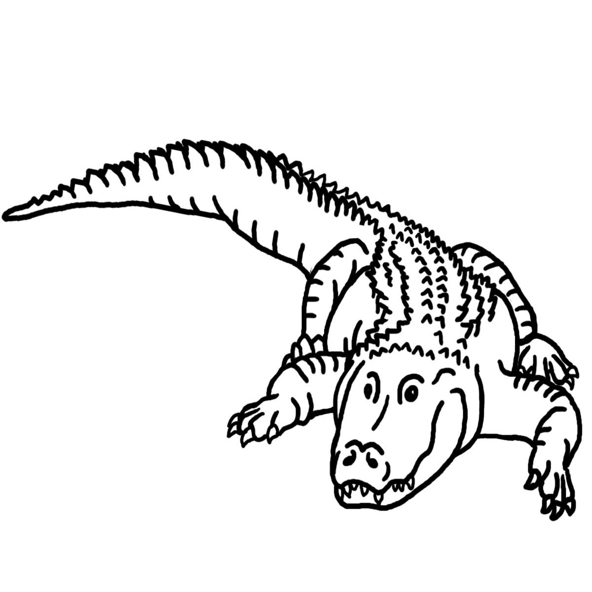 Albino aligator clipart black and white stock Alligator black and white black and white clipart alligator ... black and white stock