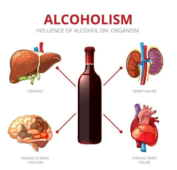 Alchohol bad for brain clipart graphic transparent download What are the disadvantages of drinking alcohol? - Quora graphic transparent download