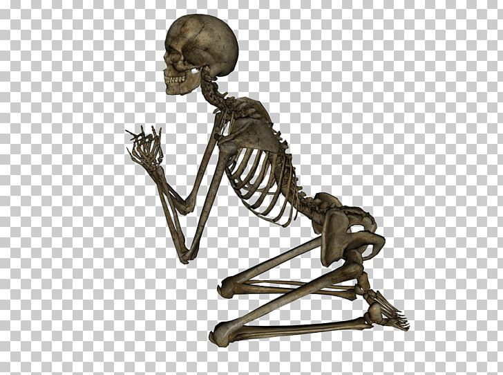 Alcohol and skelaton clipart free library Human Skeleton PNG, Clipart, Alcohol, Anatomy, Appendicular Skeleton ... free library