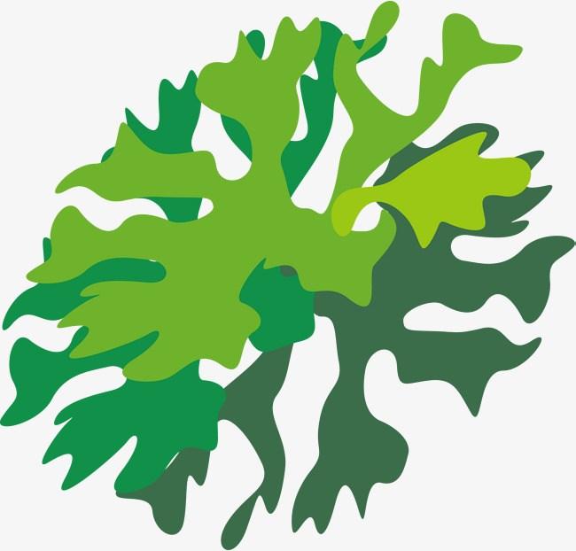 Algae images clipart svg black and white Green algae clipart 6 » Clipart Portal svg black and white