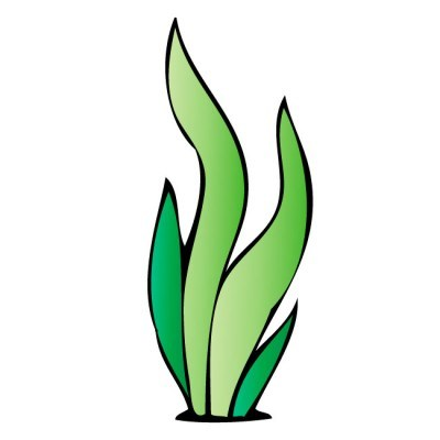 Algae images clipart banner royalty free Algae clipart 2 » Clipart Portal banner royalty free