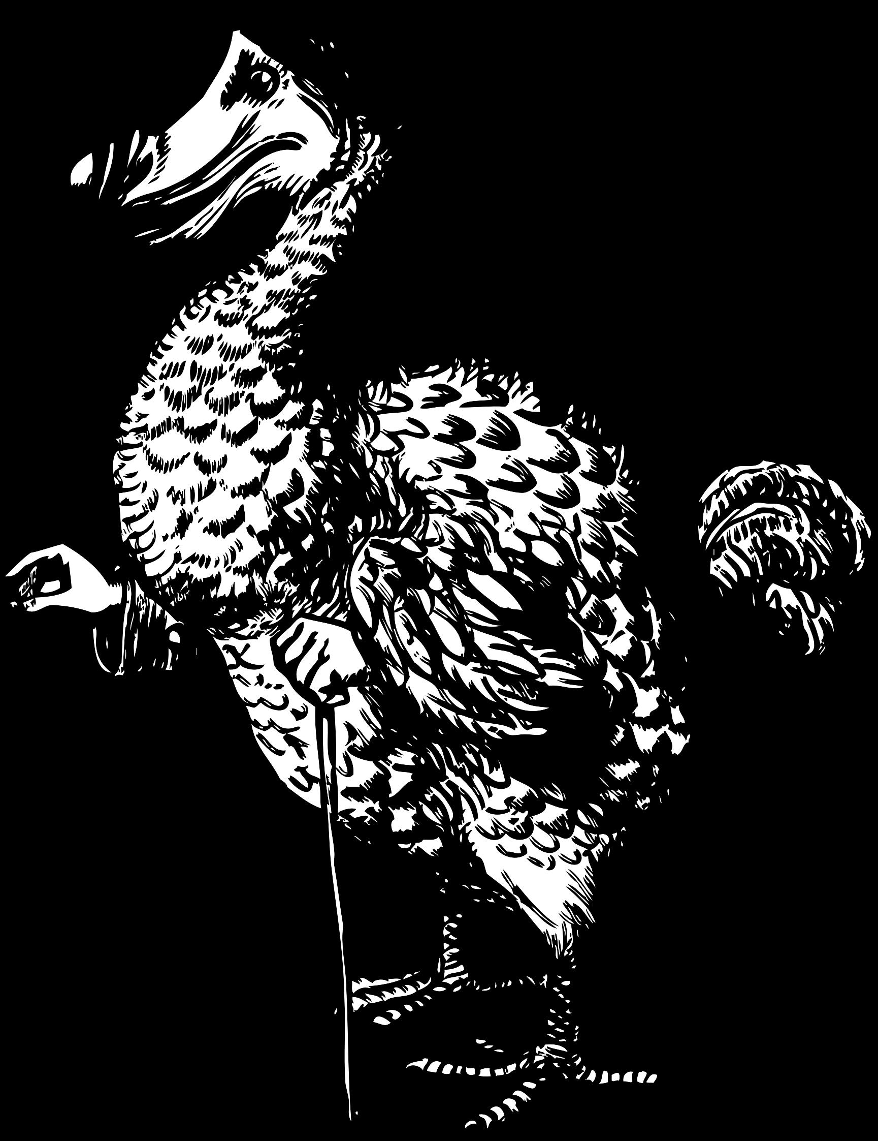 Alice in wonderland book clipart svg transparent stock Clipart - The Dodo from Alice in Wonderland svg transparent stock