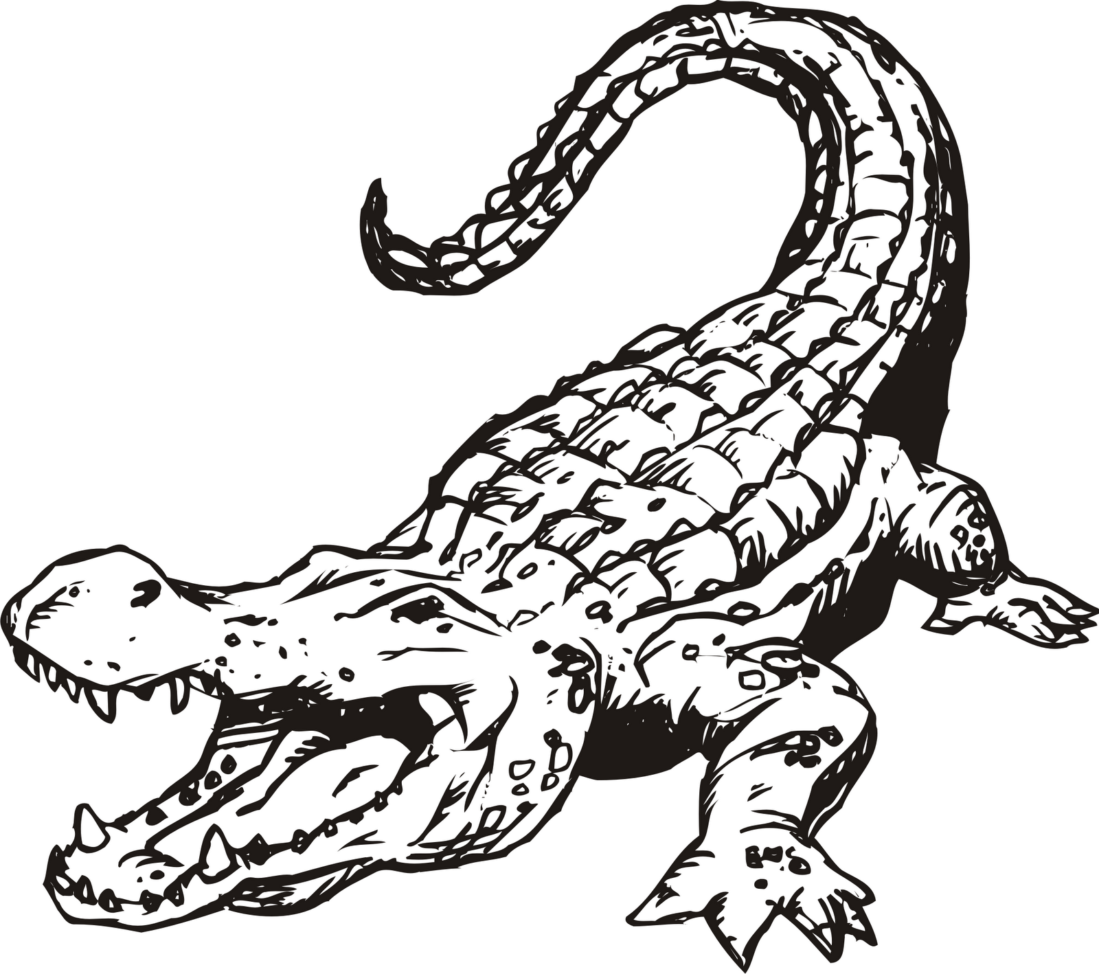 Mama and baby alligator clipart line drawing royalty free Free Gator Mascot Cliparts, Download Free Clip Art, Free Clip Art on ... royalty free