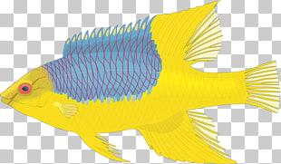 Alimentando pez clipart svg freeuse download 20 alimentando a la multitud PNG cliparts descarga gratuita   PNGOcean svg freeuse download