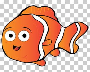 Alimentando pez clipart free stock Página 6   532 pez payaso PNG cliparts descarga gratuita   PNGOcean free stock
