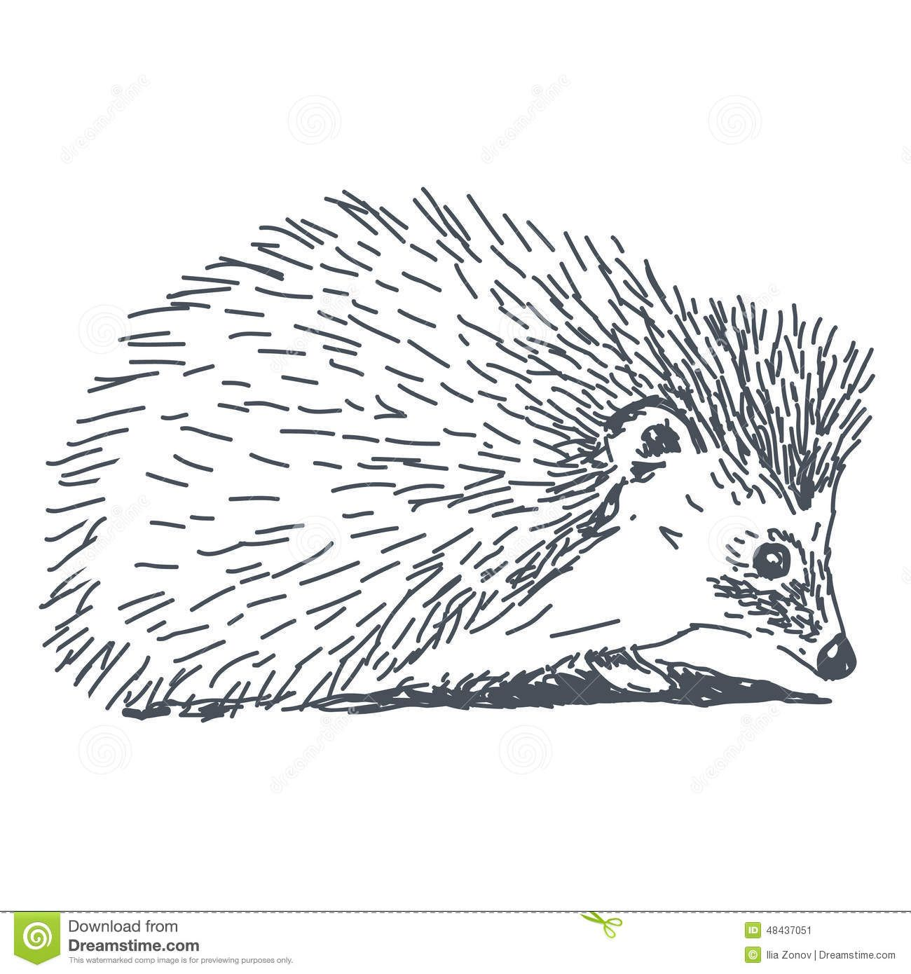 All black clipart hedgehog