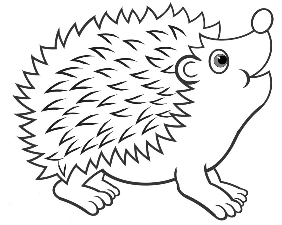 All black clipart hedgehog image black and white stock Book Black And White clipart - Hedgehog, White, Head, transparent ... image black and white stock