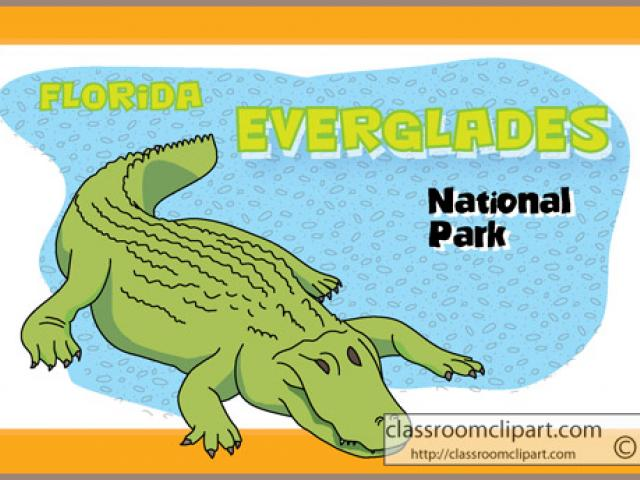 Alligator in the everglades clipart vector freeuse library Crocodile Clipart everglades 6 - 550 X 344 Free Clip Art stock ... vector freeuse library