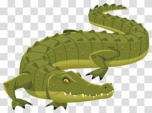 Alligators in rivers clipart without watermark jpg royalty free library Alligator Crocodiles , crocodile transparent background PNG clipart ... jpg royalty free library