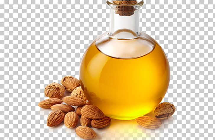 Almond oil clipart png free library Almond oil Macadamia oil Carrier oil, almond PNG clipart | free ... png free library