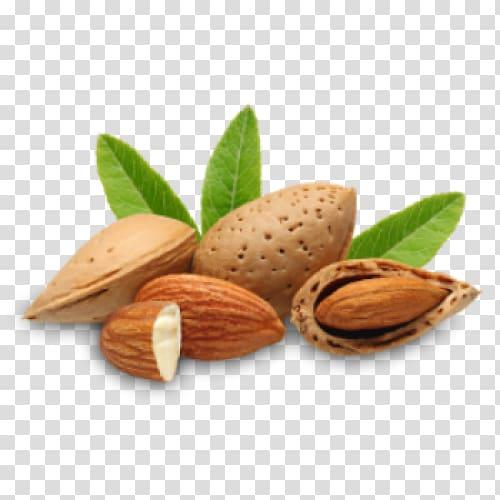 Almond oil clipart picture transparent Almond nuts, Almond oil Carrier oil Almond milk, almond transparent ... picture transparent