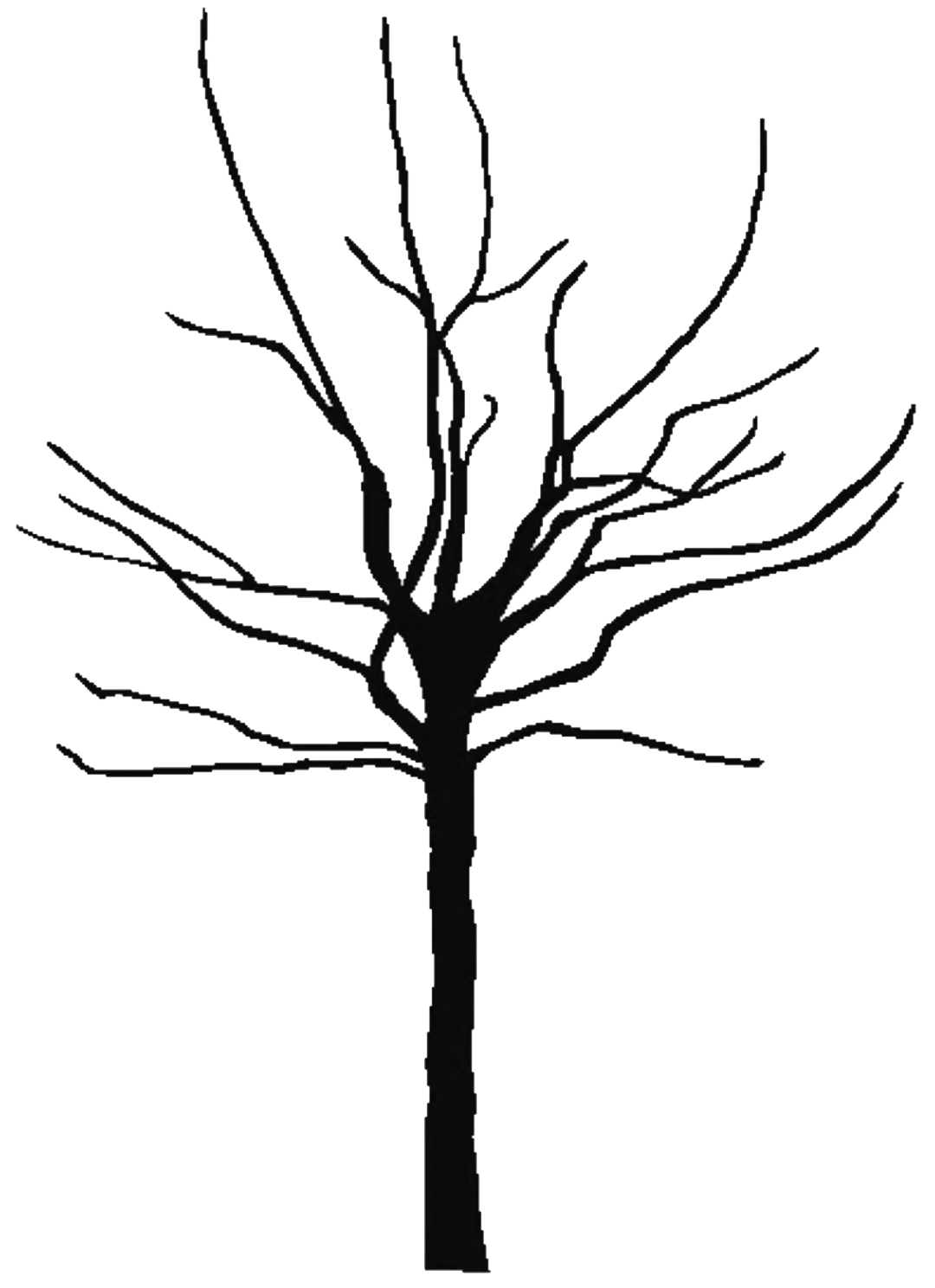 Tree trunk clipart black and white vector download bare tree clipart - Free Large Images | Projects to Try | Pinterest ... vector download