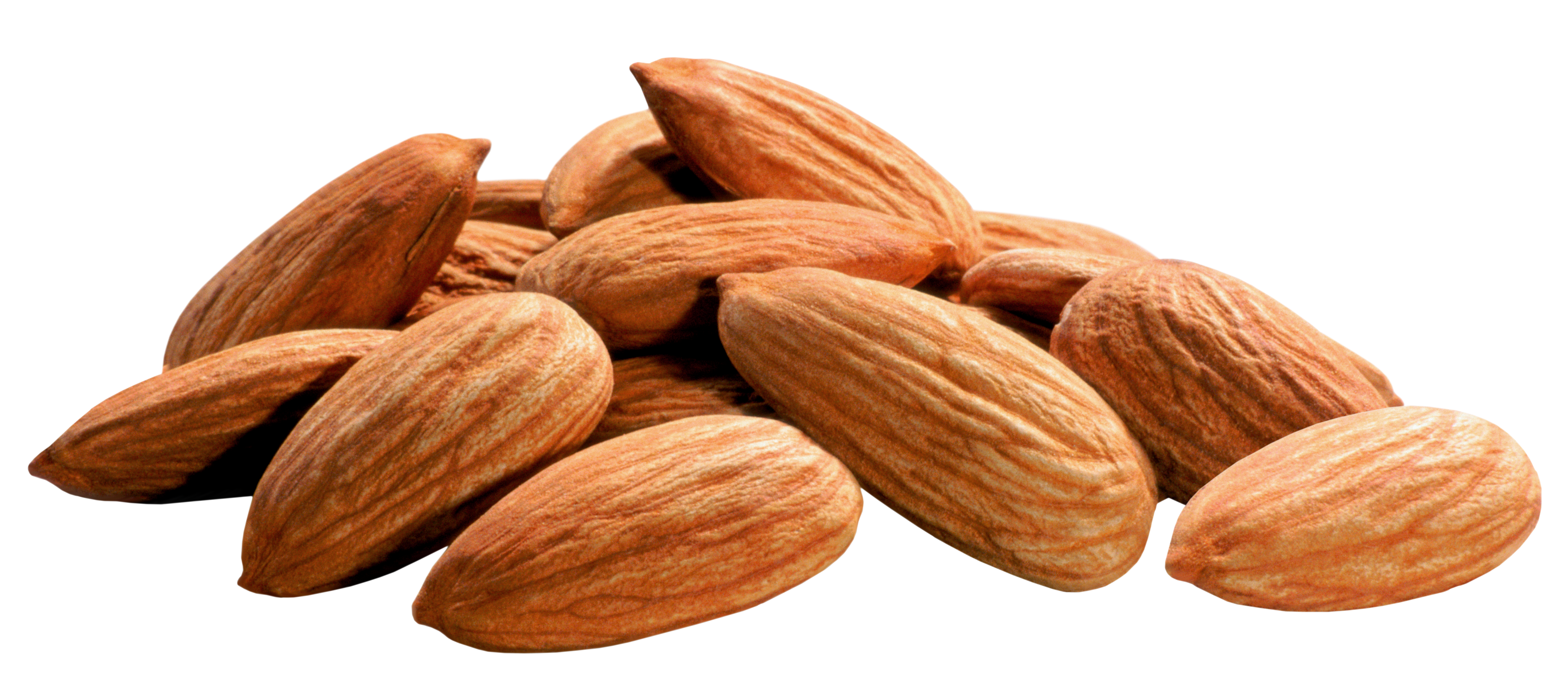 Almondt clipart transparent Almonds PNG Image | Gallery Yopriceville - High-Quality Images and ... transparent