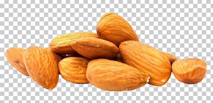 Almondt clipart banner transparent library Almond Milk Nut PNG, Clipart, Almond, Almond Milk, Almond Oil ... banner transparent library