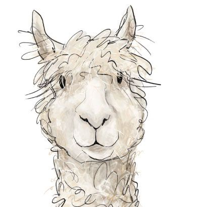Alpaca clipart images picture free download Free Alpaca Cliparts, Download Free Clip Art, Free Clip Art on ... picture free download