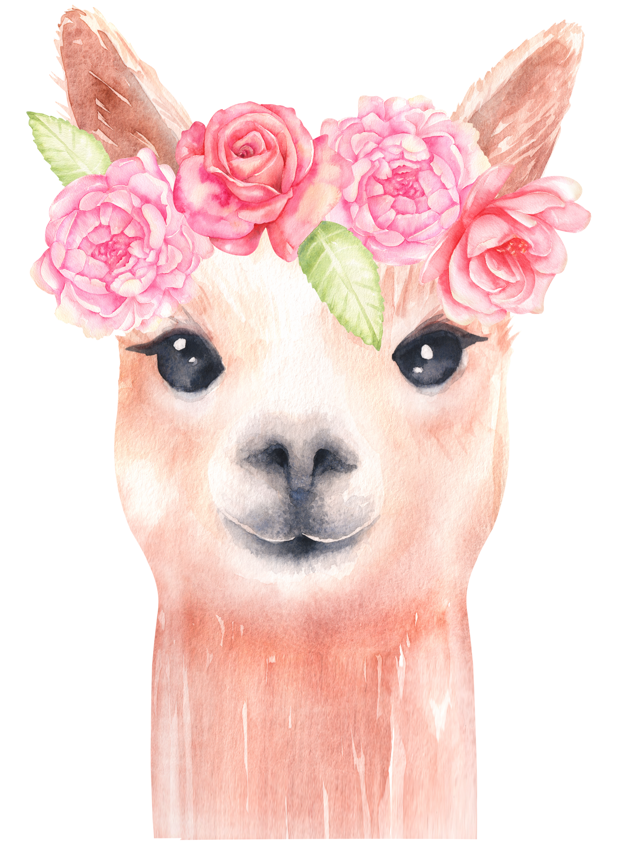 Alpaca llama clipart image royalty free download Lama clipart/ clipart animaux/ aquarelle clipart/ aquarelle alpaga ... image royalty free download