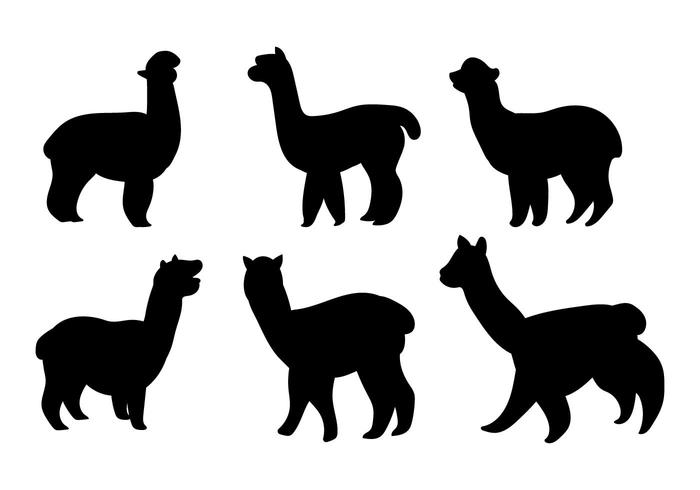 Alpaca outline clipart free clipart transparent download Alpaca Free Vector Art - (6,458 Free Downloads) clipart transparent download