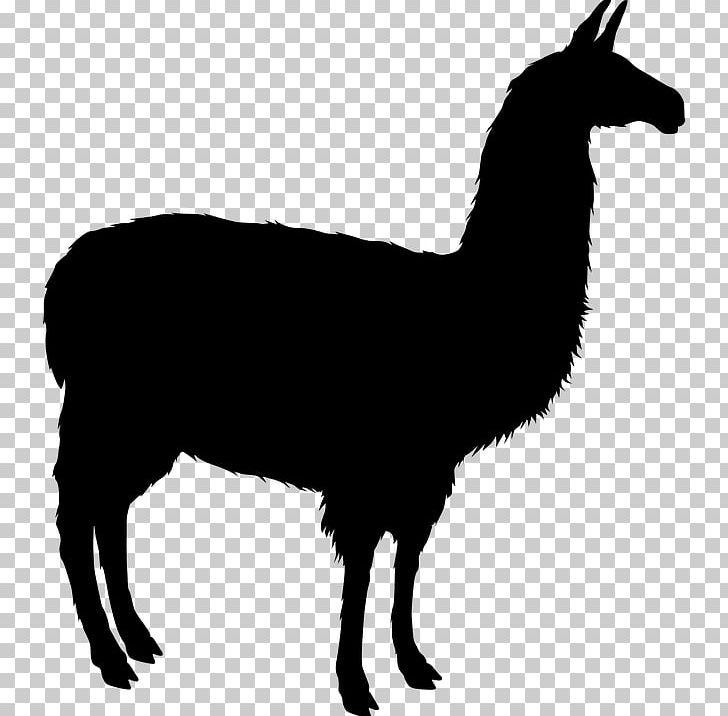 Alpaca silhouette clipart clip art royalty free stock Llama Alpaca Silhouette PNG, Clipart, Alpaca, Animals, Animation ... clip art royalty free stock