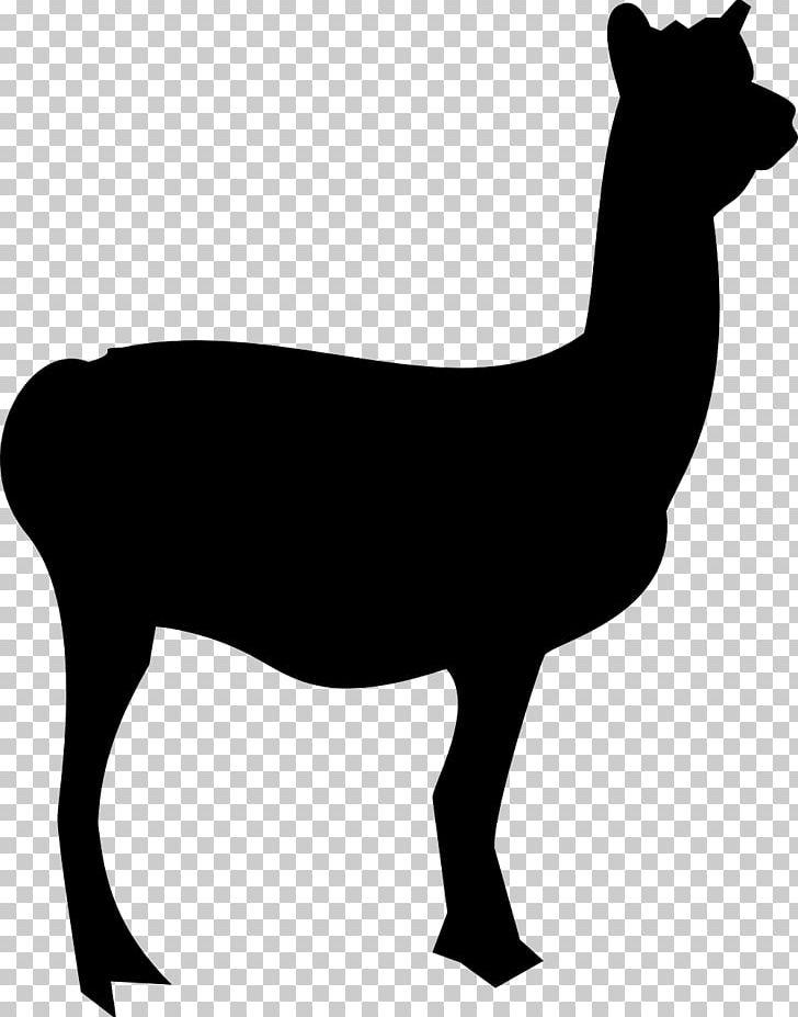 Alpaca silhouette clipart vector free library Llama Alpaca Silhouette PNG, Clipart, Alpaca, Animals, Animal ... vector free library