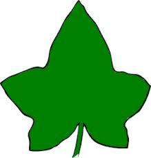 Alpha phi ivy leaf clip art - ClipartFest image black and white download