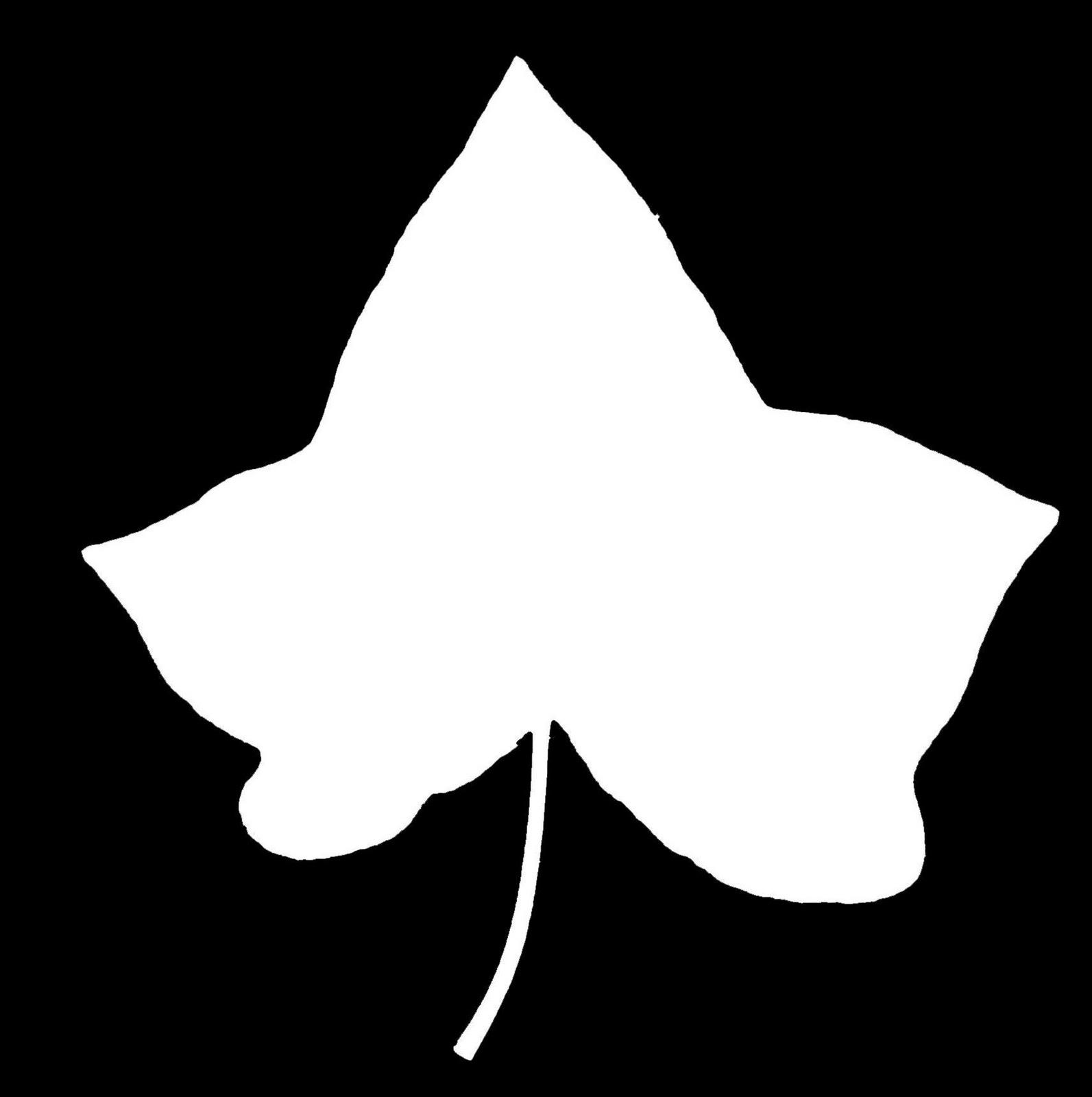Alpha phi ivy leaf clip art - ClipartFest png freeuse