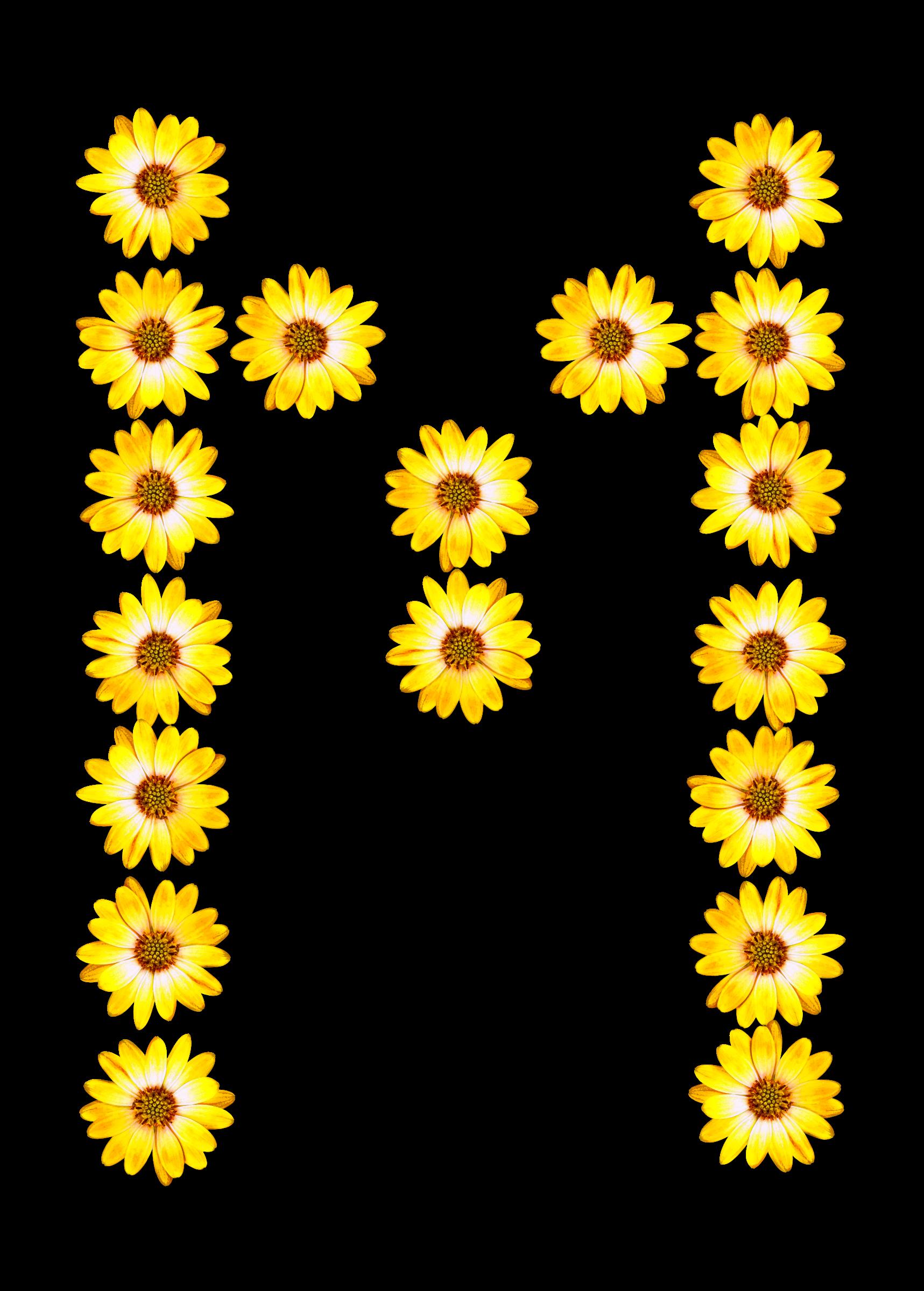 Alphabet flower clipart clip art library stock Clipart - Floral alphabet, M clip art library stock