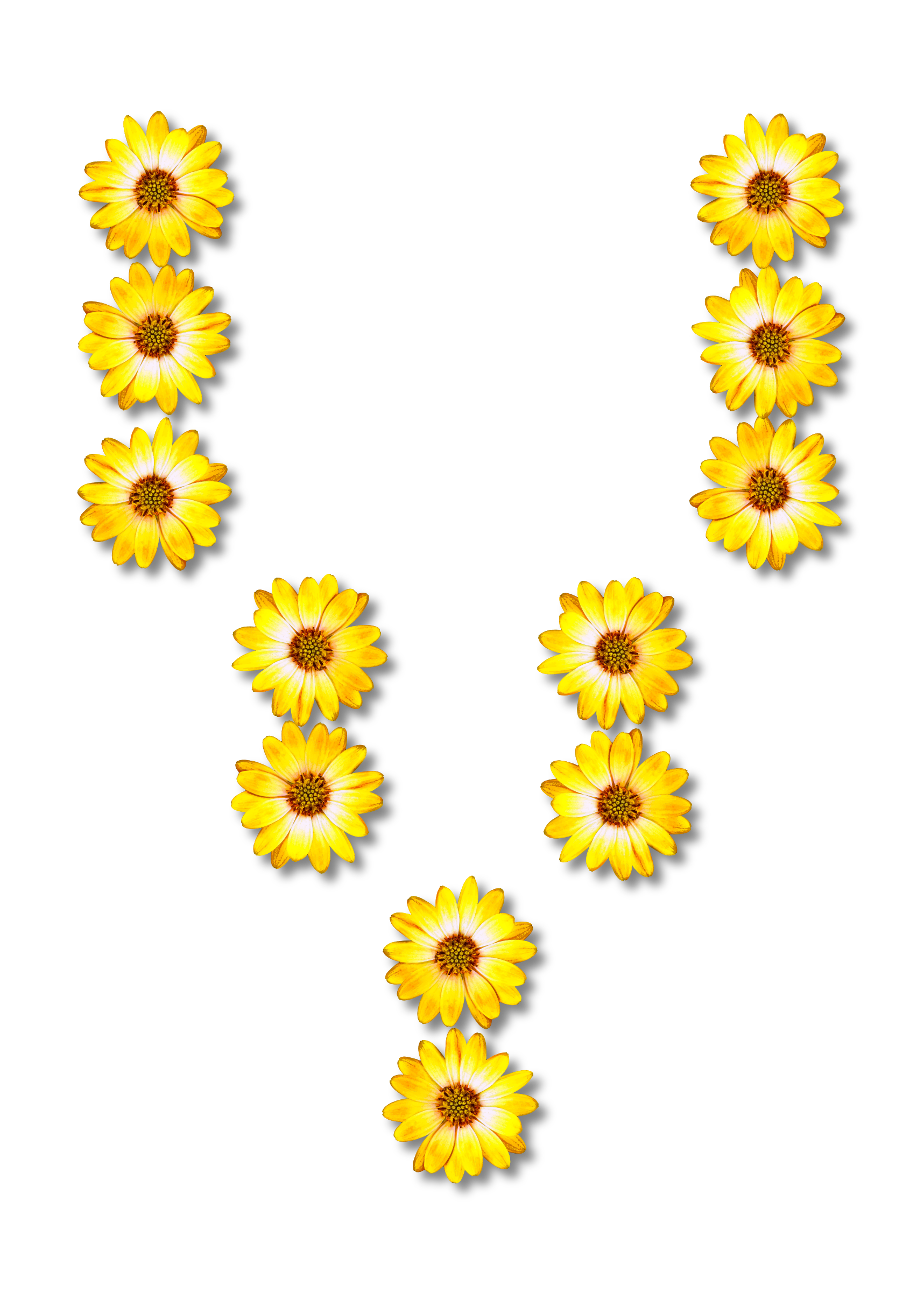 Alphabet flower clipart picture library library Clipart - Floral alphabet, V picture library library