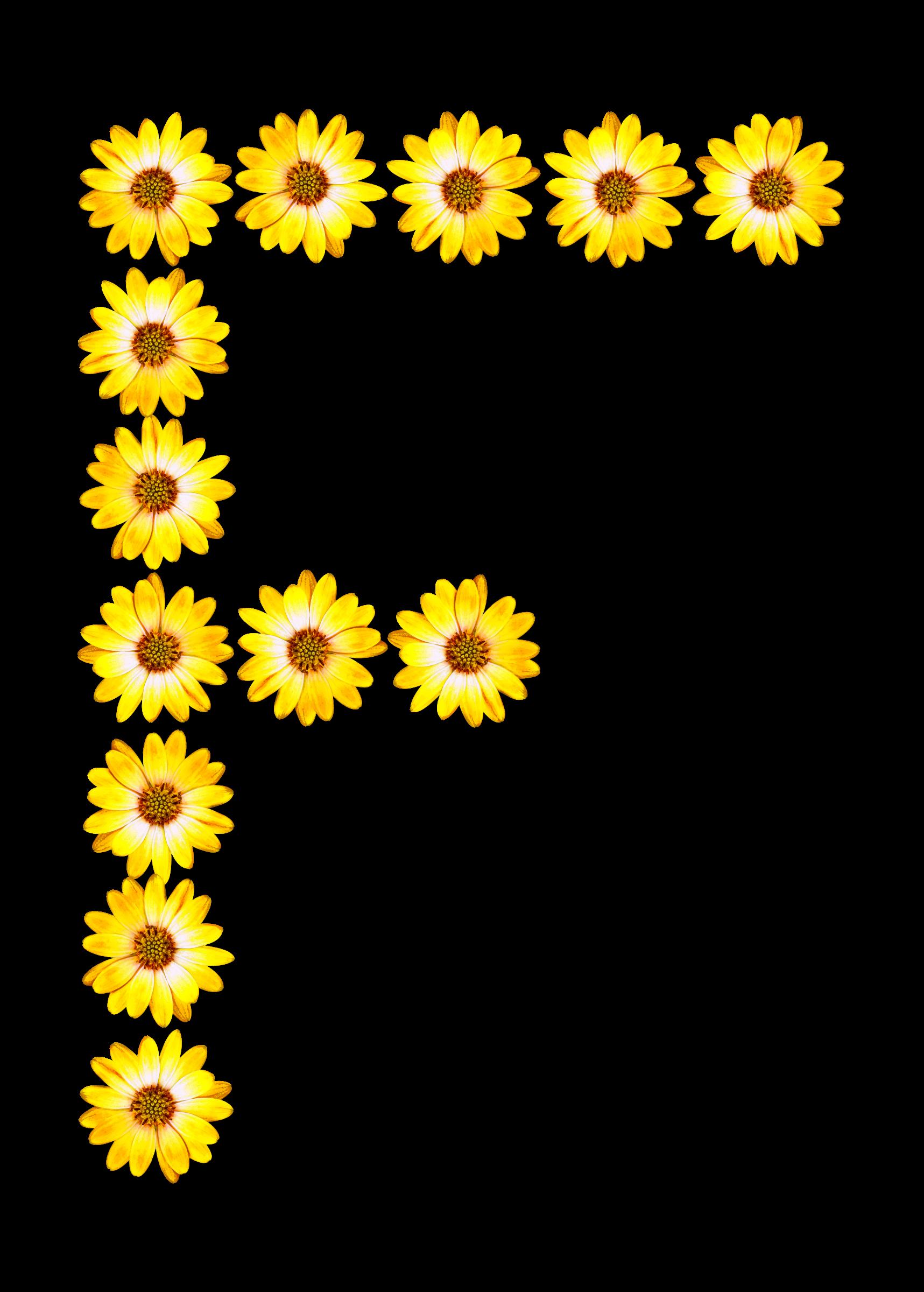 Alphabet flower clipart clip art free stock Clipart - Floral alphabet, F clip art free stock