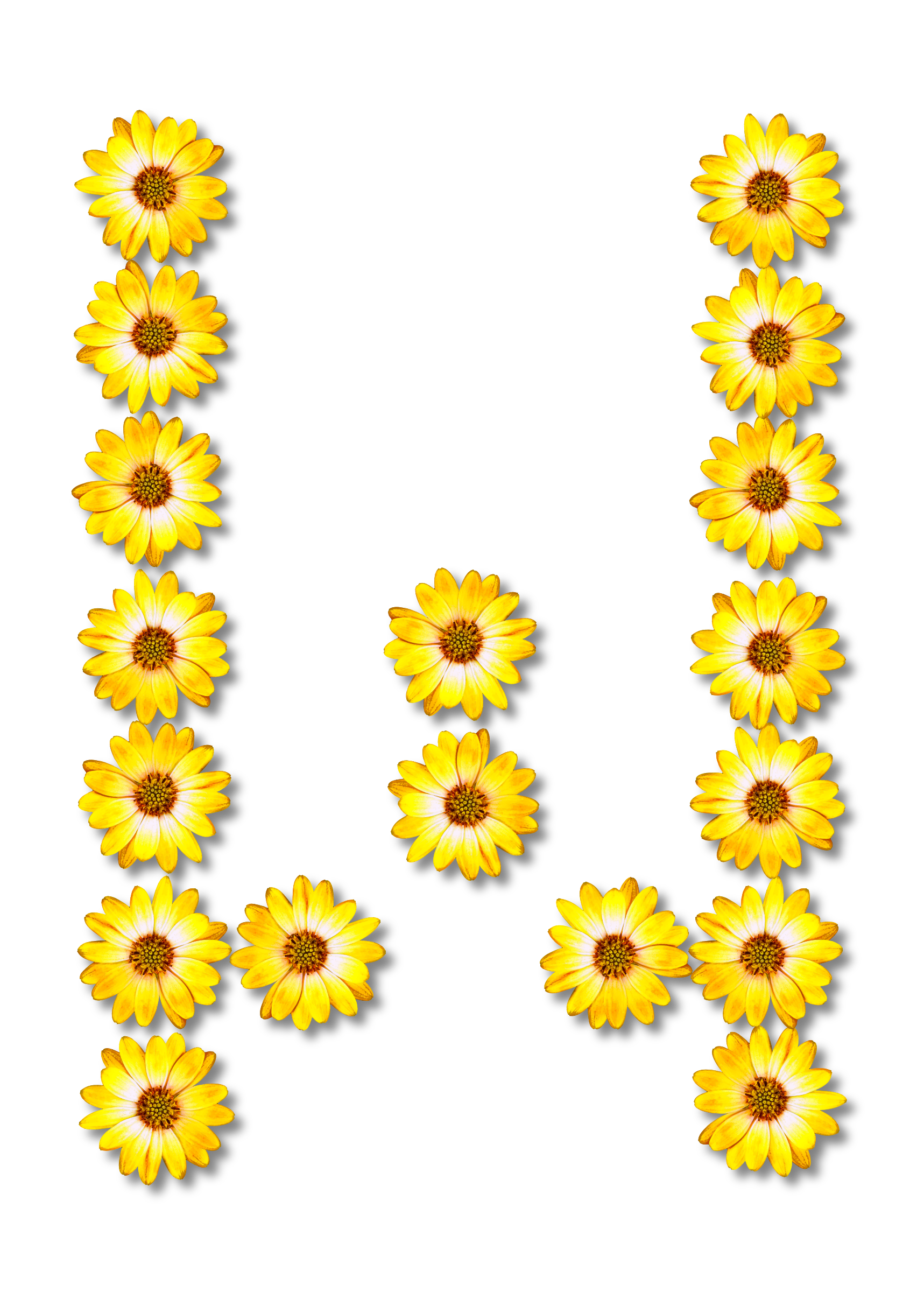 Alphabet flower clipart svg free Clipart - Floral alphabet, W svg free