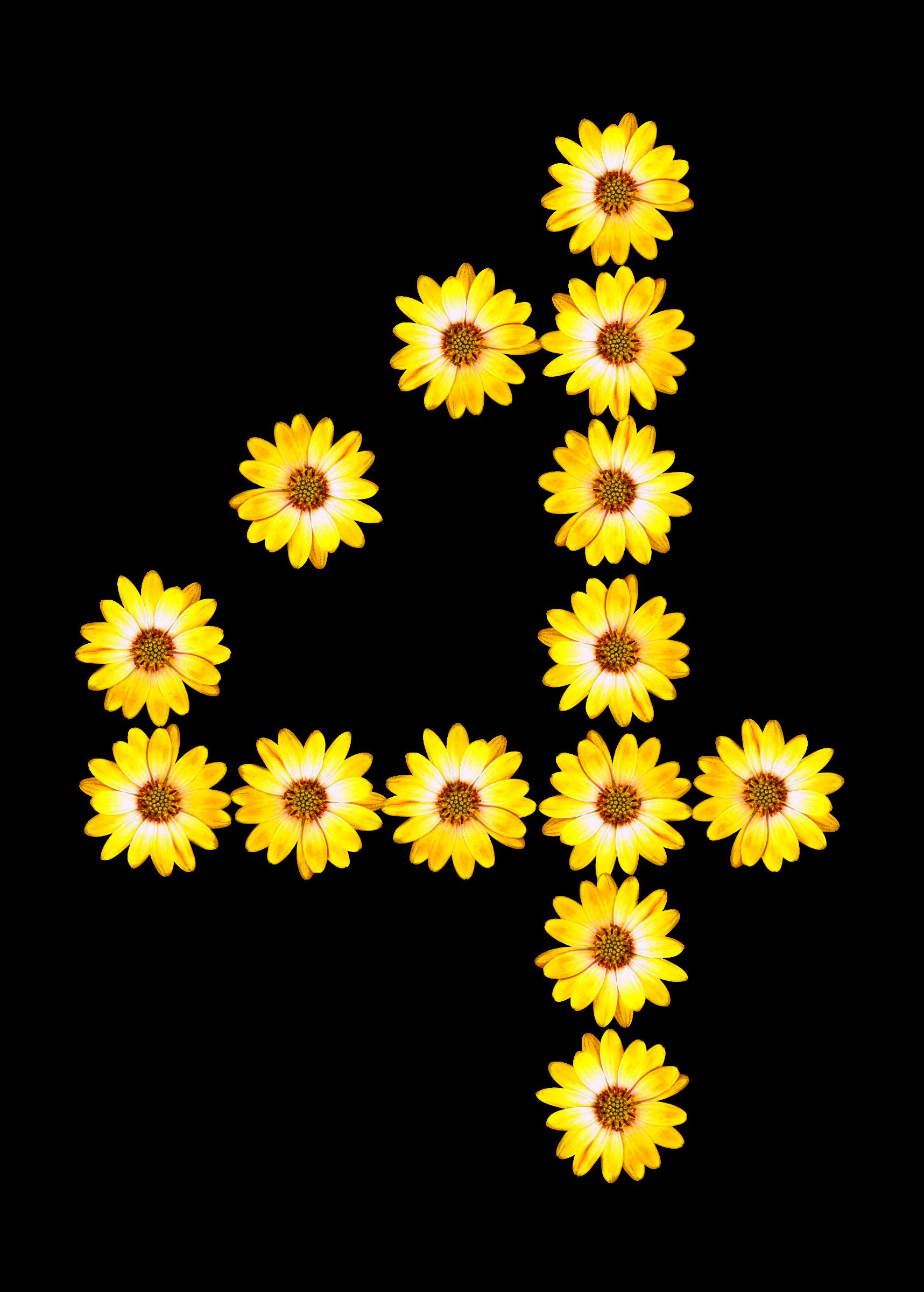Alphabet flower clipart transparent Clipart - Floral alphabet, 4 transparent