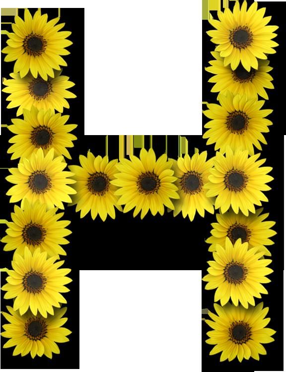 Alphabet flower clipart png library stock Alfabeto sunflowers .....H | letter