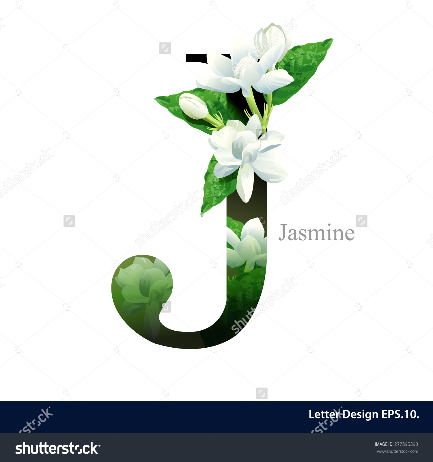 Alphabet flower clipart letter j graphic free download Letter J Vector Alphabet Jasmine Flower Stock Vector 277895390 ... graphic free download