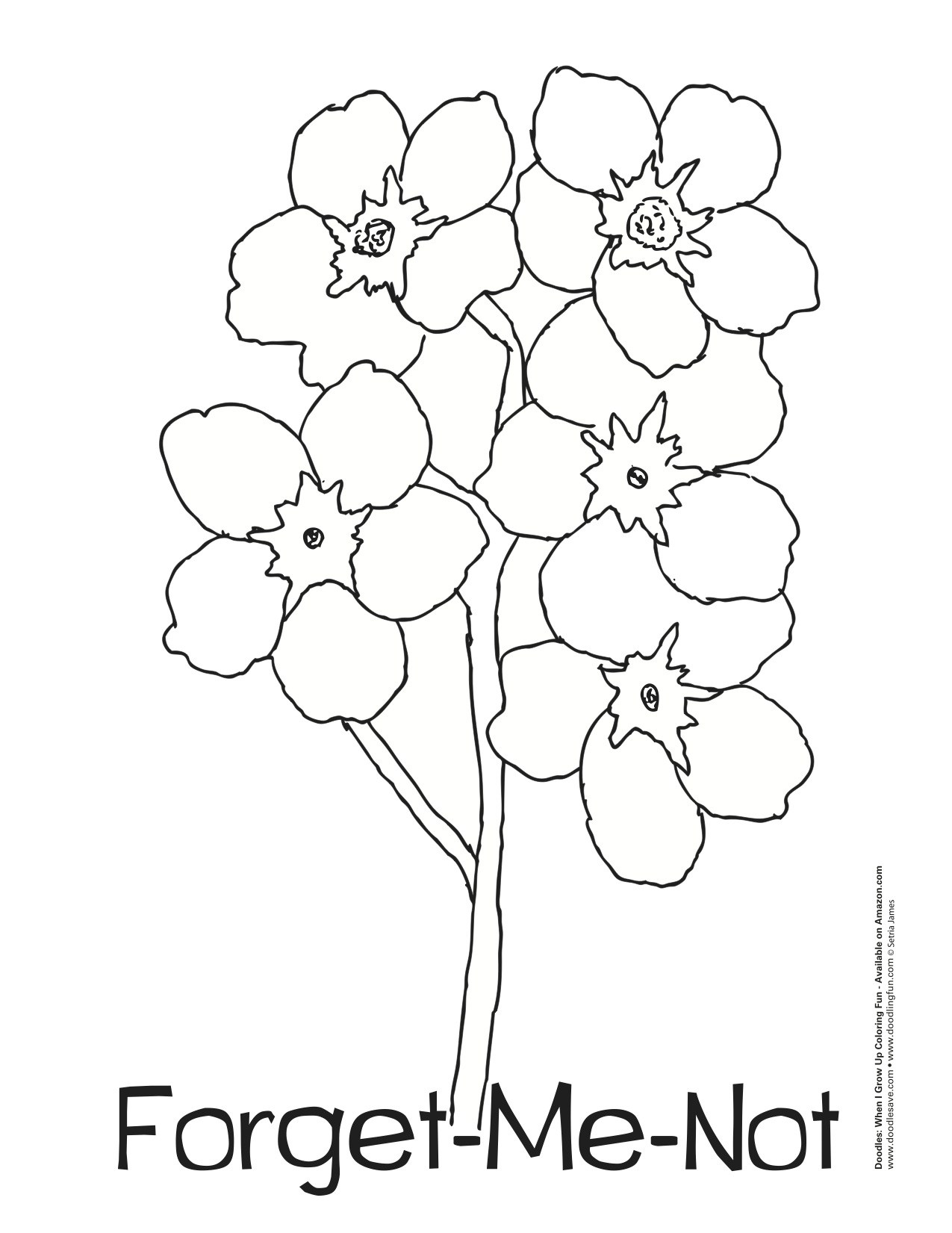 Alpine forget me not clipart outline black and white clip free Forget paintings search result at PaintingValley.com clip free
