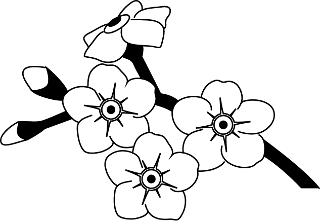 Alpine forget me not clipart outline black and white clip black and white stock Forget Me Not Drawing at GetDrawings.com | Free for personal use ... clip black and white stock