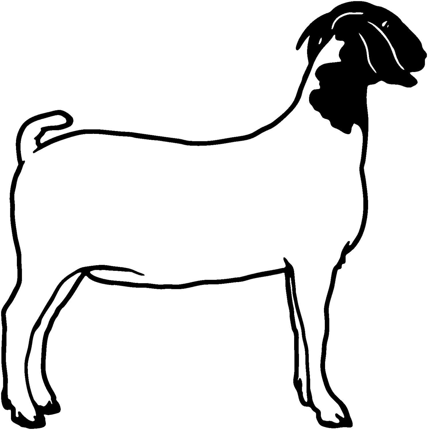 Girl looking out window at goats clipart png Pygmy Goat Drawing | Free download best Pygmy Goat Drawing on ... png