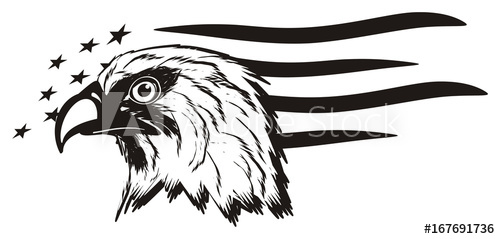 American bald eagle clipart black and white banner freeuse Eagle, bird, bald eagle, head, white, America, USA, cartoon ... banner freeuse