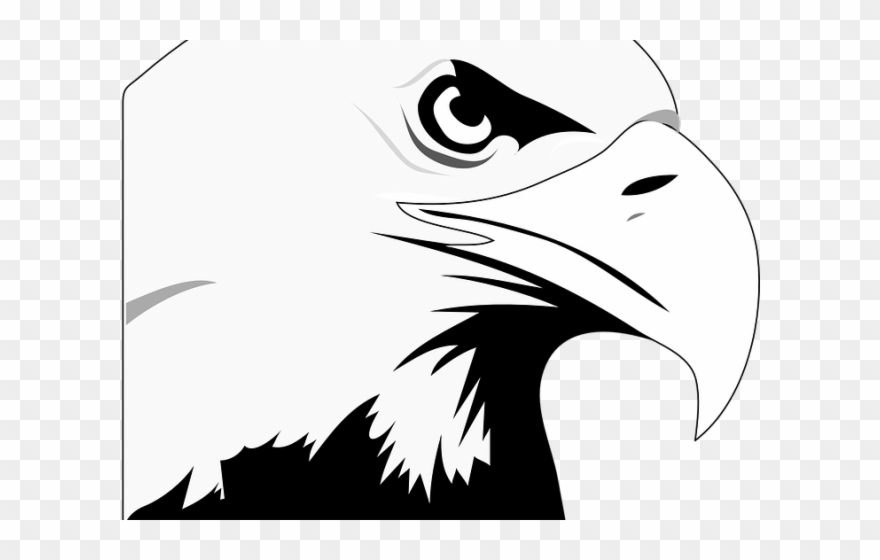 American bald eagle clipart black and white image transparent Black Eagle Clipart American Eagle - Bald Eagle Black And White ... image transparent