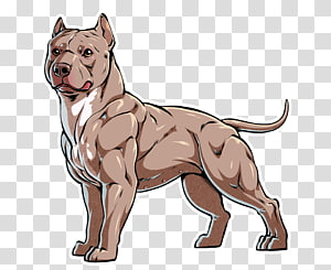 American bully clipart vaccine clipart transparent library French Bulldog English Mastiff American Bulldog American Pit Bull ... clipart transparent library