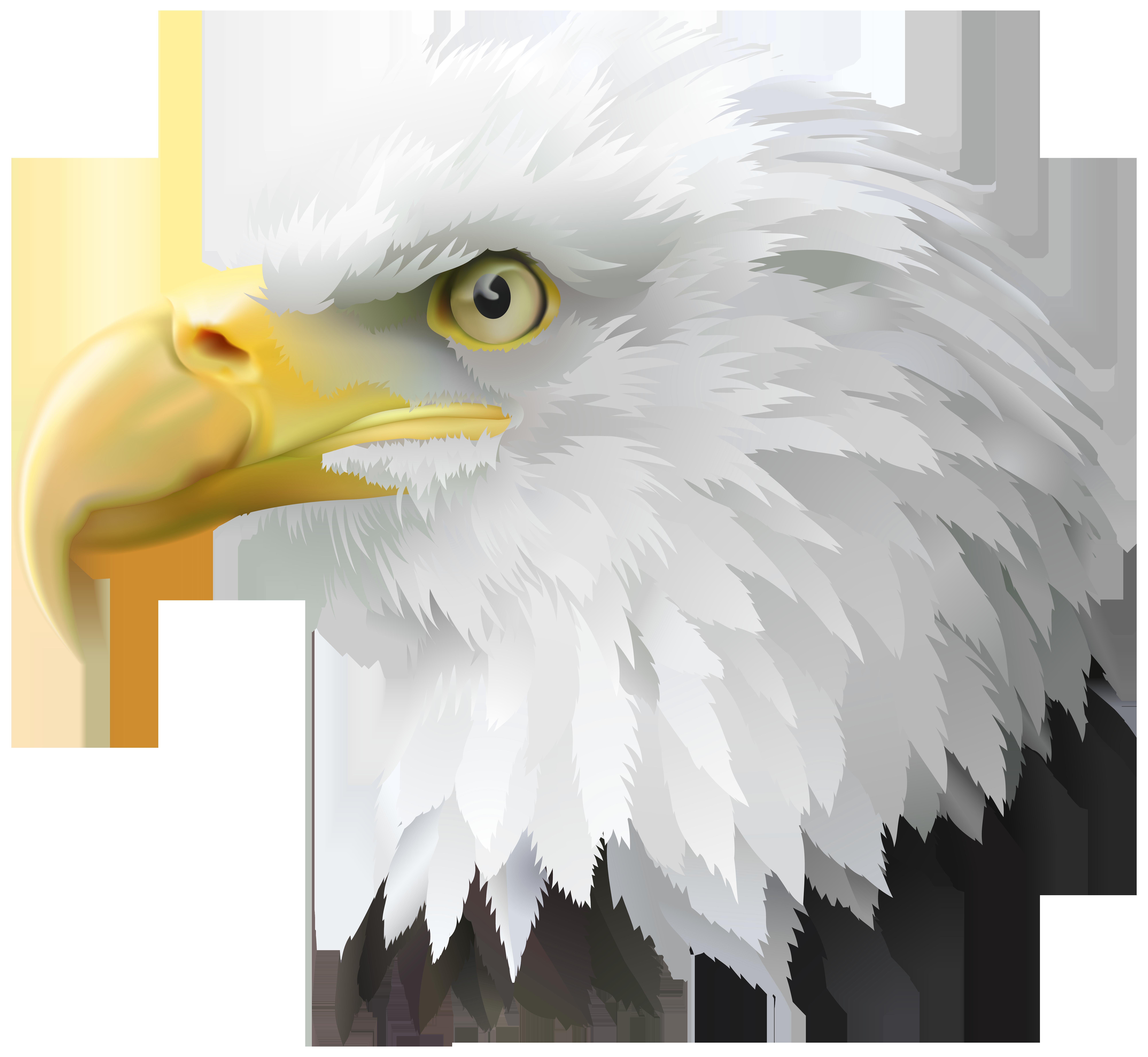 American eagle head clipart clipart freeuse library American Eagle Head Transparent PNG Clip Art Image   Gallery ... clipart freeuse library