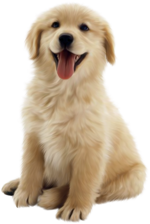 Great pyrenees dog clipart clip art free chiens,dog,puppies,wallpapers | perros | Pinterest | Dog, Corgis and ... clip art free