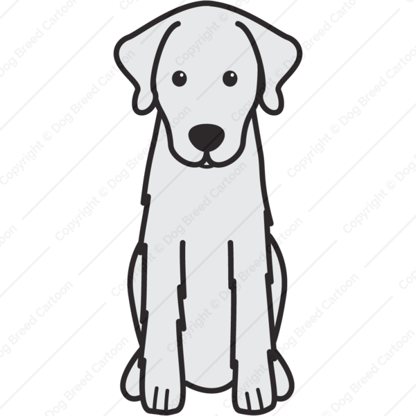 American eskimo dog clipart stock Special Archives | Dog Breed Cartoon stock
